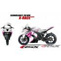 RSX kit déco racing KAWASAKI ZX10R X-RACE base blanc 11-