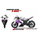 RSX kit déco racing KAWASAKI ZX10R X-RACE base blanc 11-
