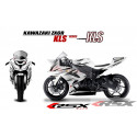 RSX kit déco racing KAWASAKI ZX6R RACE base blanc 13-